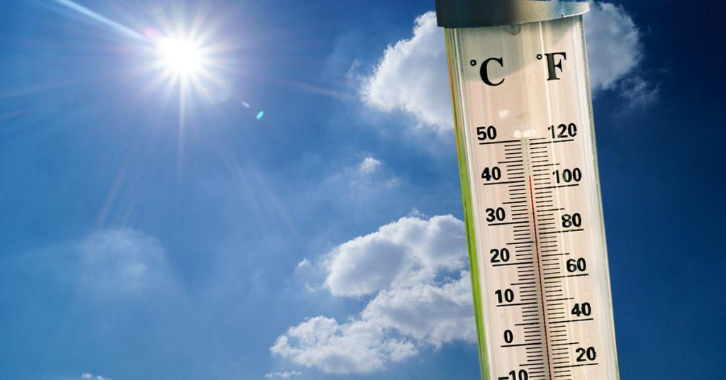 Sončarica je še posebej nevarna za otroke, starostnike in bolnike