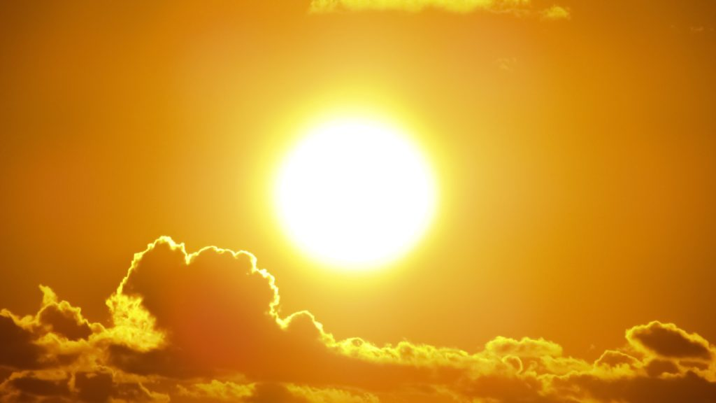 Sončarica je za posameznika lahko usodna