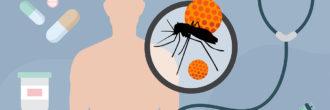 Najpogostejše bolezni, ki jih prenašajo komarji